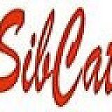 SibCat-SPb
